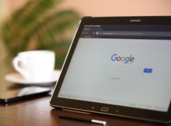 Google Penguin Update: How It Will Affect Your Site